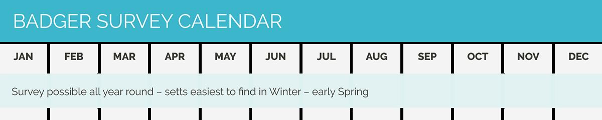 CSA calendar badger survey