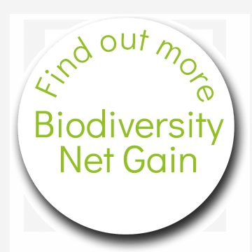 Find out more - Biodiversity Net Gain